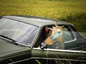 venir en voiture